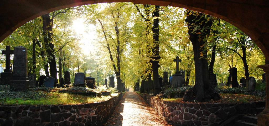 Friedhöfe - Orte der Ruhe, der Besinnung und der Kraft