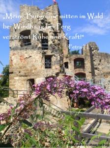 Burgruine Winhaag Perg