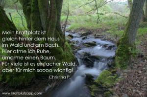 Kraftplatz_Wald_Bach