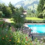 Blick in den Garten und zum Schwimmbad